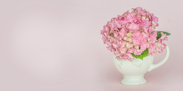 Spring background with soft blue hydrangea (hydrangea macrophylla) or hortensia flower