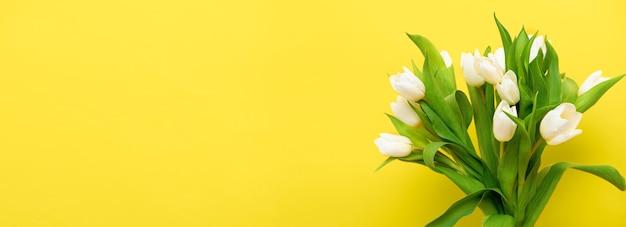 봄 배너 노란색 조명 배경에 흰색 튤립 꽃다발입니다. 부활절과 봄 인사말 카드