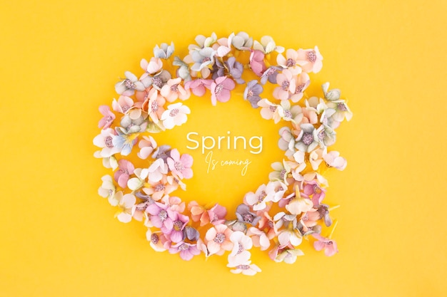 Spring banner with daisies on a yellow background