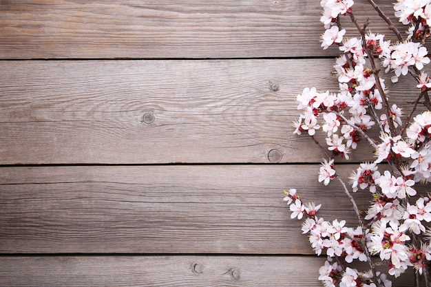 Spring blooming branches on grey wooden background.