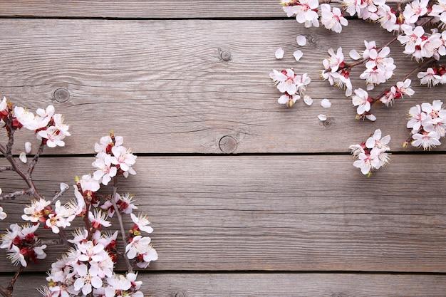 灰色の木製の背景に春咲く枝。