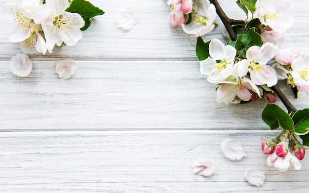美しい白い花の枝を持つ春の境界面