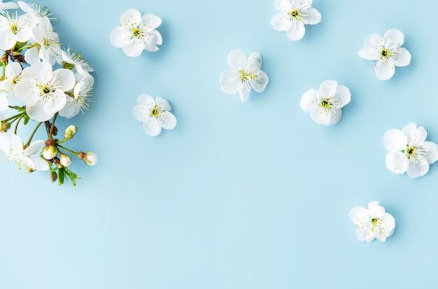 아름다운 흰색 꽃 가지와 봄 테두리 테이블. 파란 테이블, 섬세한 꽃을 피 웁니다. 봄 개념. 평면 위치 평면도 복사 공간.