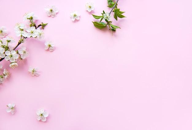 아름다운 흰색 꽃 가지와 봄 테두리 테이블. 분홍색 테이블에 섬세한 꽃이 피어납니다. 봄 개념. 평면 위치 평면도 복사 공간.