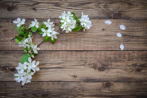 Весенние ветви цветущей яблони с белыми цветами на деревенском деревянном фоне с местом для текста