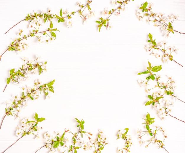 白い背景の上のフレームの形で開花桜の春の枝。フラットレイ、ポストカードブランク、テキスト用スペース、コピースペース。上からの眺め。