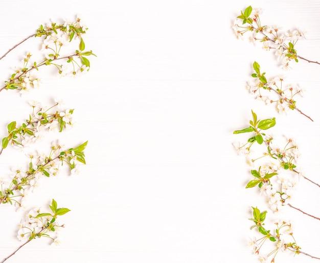 白い背景に白い花と桜の春の枝。フラットレイ、ポストカードブランク、テキスト用スペース、コピースペース。上からの眺め。