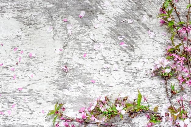 花びらを持つ白い素朴な木製のテーブル背景に春の桜や桜の花