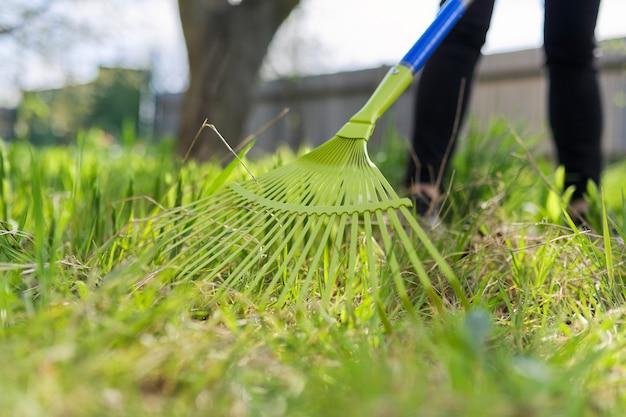 庭の春の大掃除、乾いた草や葉から緑の草を掃除するクローズアップ熊手