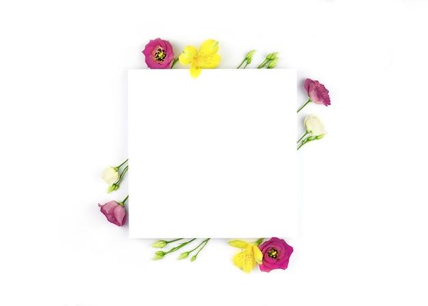 봄 구성. 꽃, 종이 빈 흰색 배경.