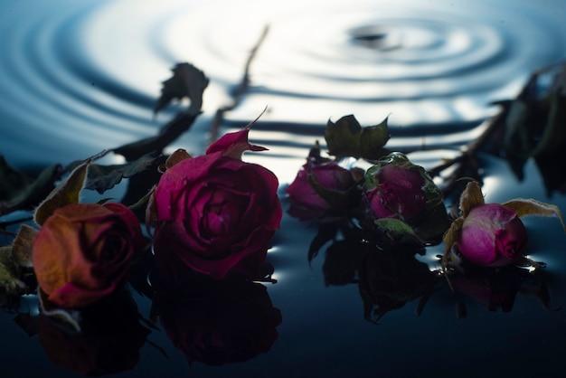 Весенняя композиция из сушеных маленьких роз на воде, капли воды крупным планом. Premium Фотографии