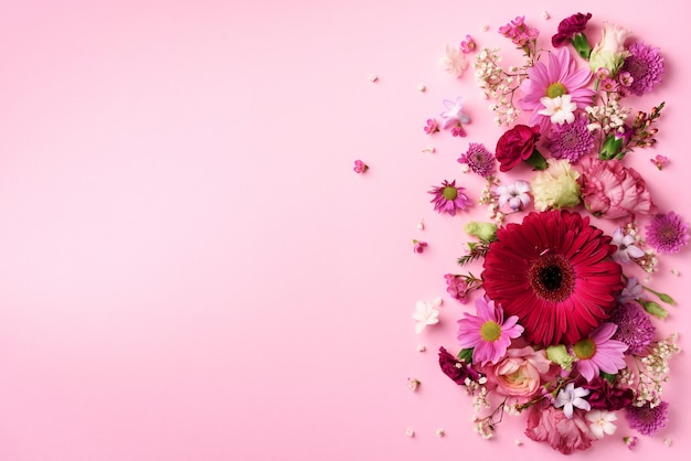 Spring composition of pink flowers on punchy pastel background.