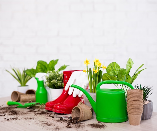 Spring concept - close up of potted plants and gardening tools on wooden table over white brick wall