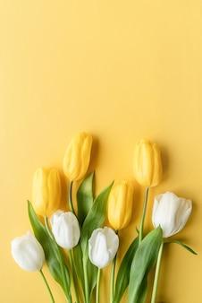 봄 개념. 노란색 바탕에 아름 다운 노란색과 흰색 튤립의 상위 뷰