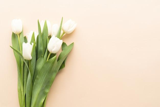 봄 개념. 복사 공간 파스텔 배경에 흰색 튤립 꽃다발