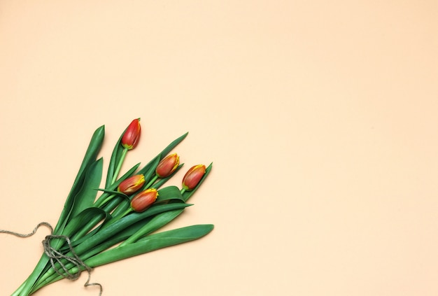 Spring flat lay bouquet of tulips