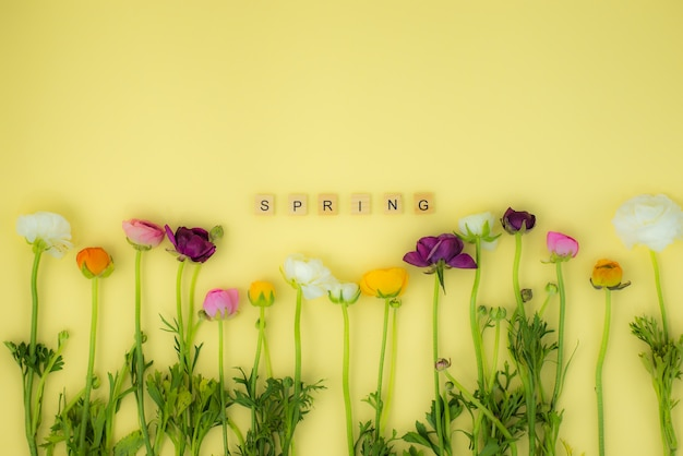 Spring flatlay concept background with flowers and spring wooden word