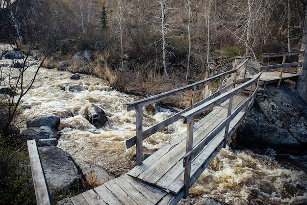 Spring flood. stormy river rapidly carrying meltwater. old wooden bridge over mountain stream. awakening of nature after winter.