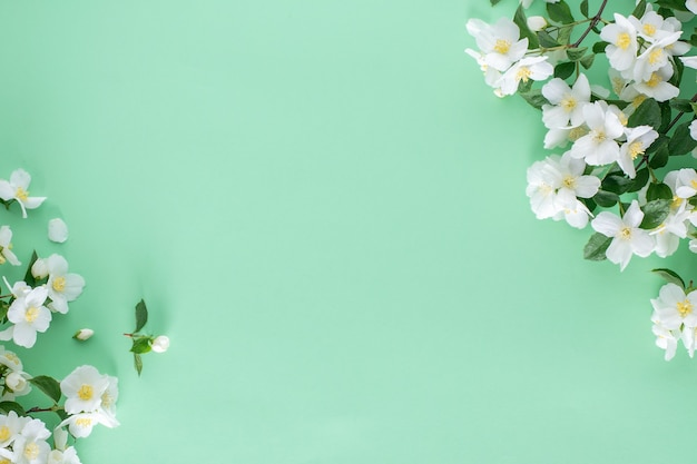Spring floral arrangement of jasmine flowers on a green background with copy space.
