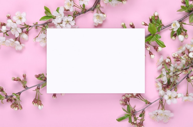 Spring floral background for greeting card on pink background. copy space