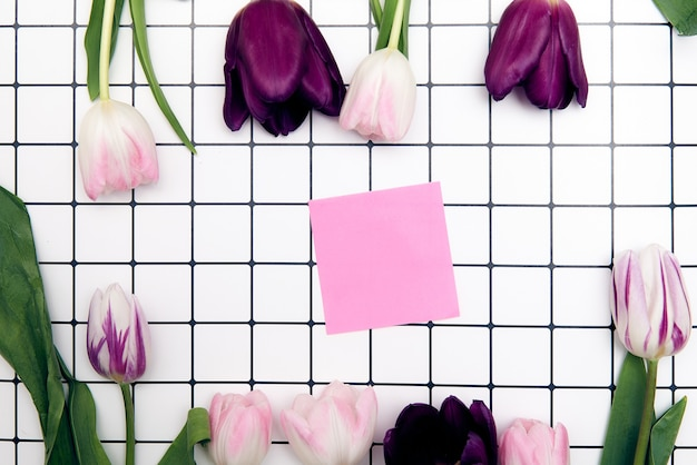 Spring floral background with copy space. flat-lay frame made of tulips blossom flowers with water drops