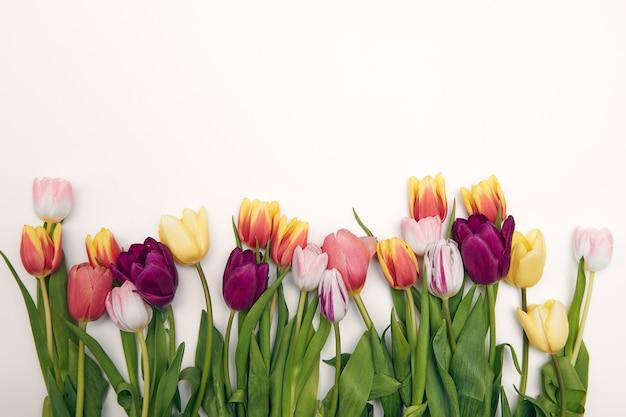 Весенний цветочный фон с копией пространства