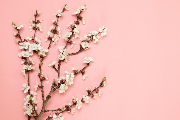 Spring flower branches pattern pastel pink background