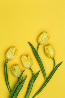 노란색 배경에 튤립의 봄 꽃입니다. 밝은 색상과 최소한의 스타일.