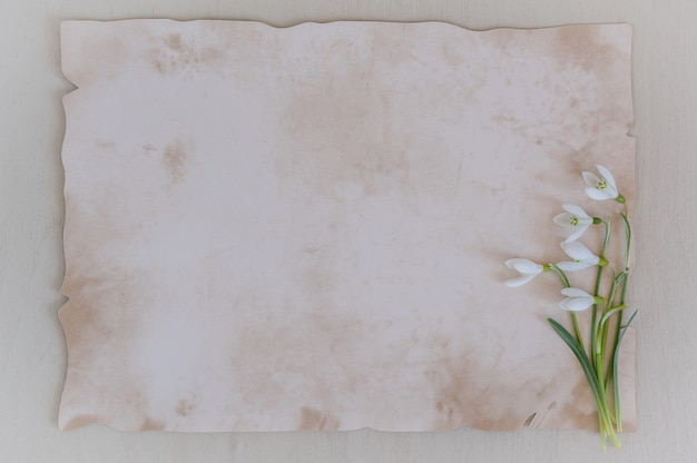 Spring flowers are snowdrops and paper for text on a wooden background