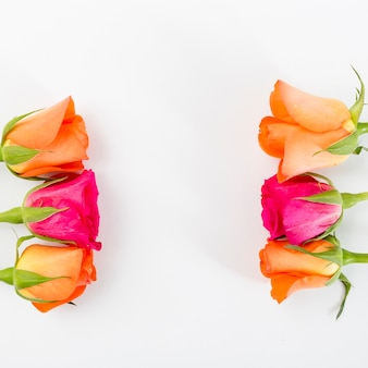 Spring flowers background with frame concept