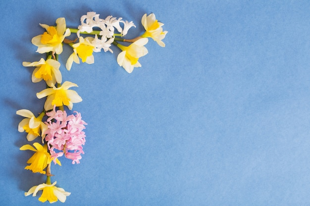 Spring flowers on blue paper background