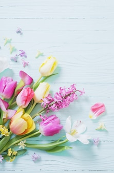 Spring flowers on blue wooden background