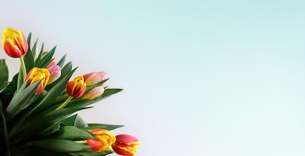 春の花の花束。青い背景の美しいチューリップ。フラットレイ、上面図、コピースペース