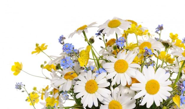 봄 꽃 꽃다발 절연