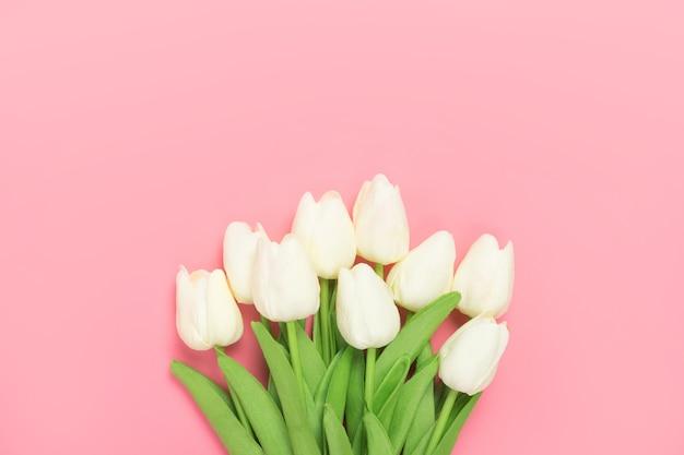 분홍색에 흰색 튤립의 봄 꽃 무리