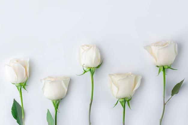 春の花の組成物。ピンクのパステル調のバラの花の創造的なパターン。ロマンチックな背景。バレンタイン、レディース、母の日、または結婚式のコンセプト。