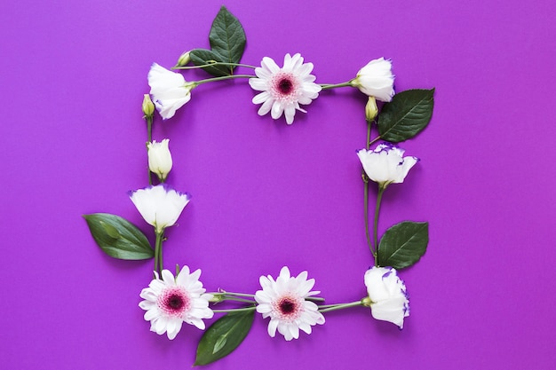 Spring flowers and leaves frame on violet background