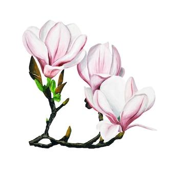 지점에 봄 꽃