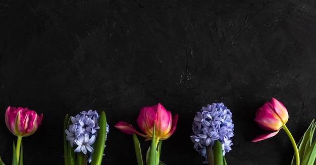 Весенние цветы на черном заднем. розовые тюльпаны и фиолетовый гиацинт лежал в сыром на черной доске