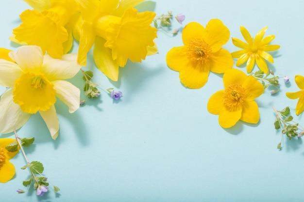 파란색 배경에 봄 꽃