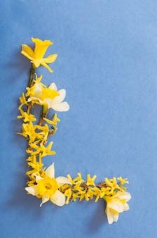 블루 종이 표면에 봄 꽃