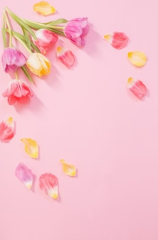 ピンクの背景に春の花