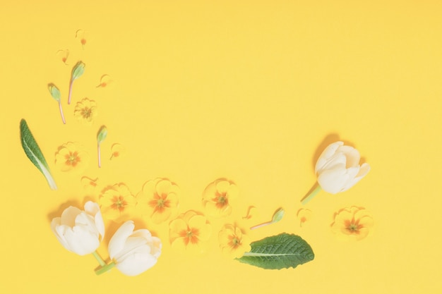 Весенние цветы на желтом