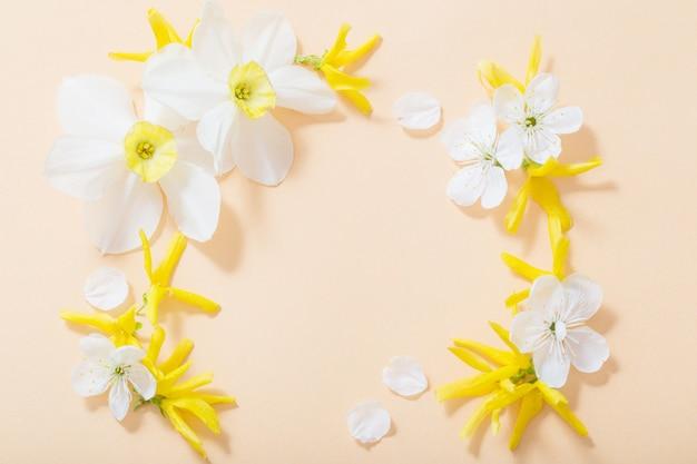 Spring flowers on orange paper background