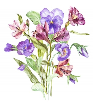 Spring flowers pansy and alstroemeria treelooking at shelves watercolor hand drawn illustration.
