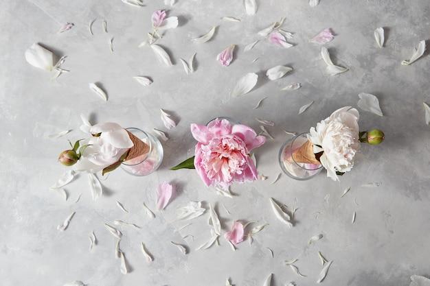 ピンク、白の牡丹、灰色の石の背景に花びら、コピースペースと春の花のパターン。上面図。バレンタインデーおめでとうのコンセプト