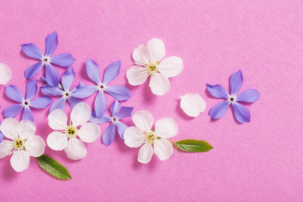 Spring flowers on pink table