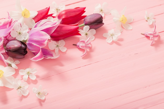 Spring flowers on pink wooden background