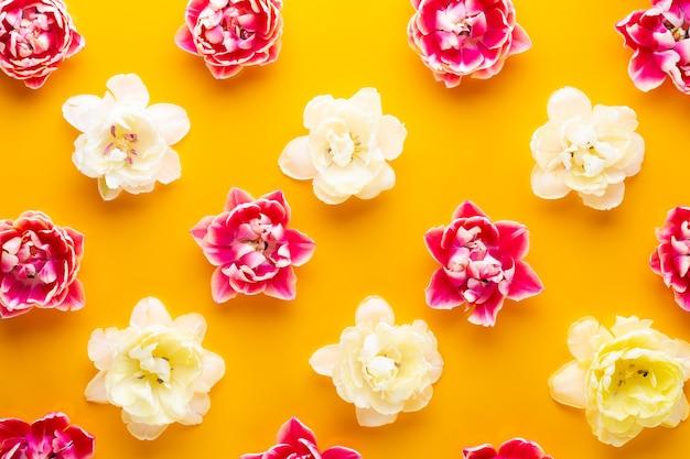 春の花。パステルカラーの背景にチューリップ。グリーティングカードレトロなビンテージスタイル。