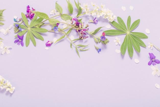 Spring flowers on violet paper surface